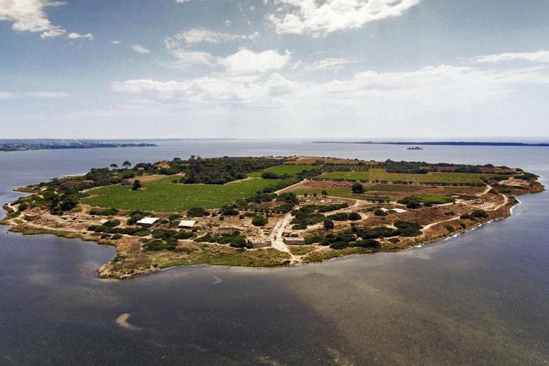 Visita isola di Mothia e Saline